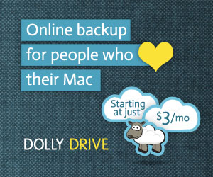 Dolly Drive email ad 300x250